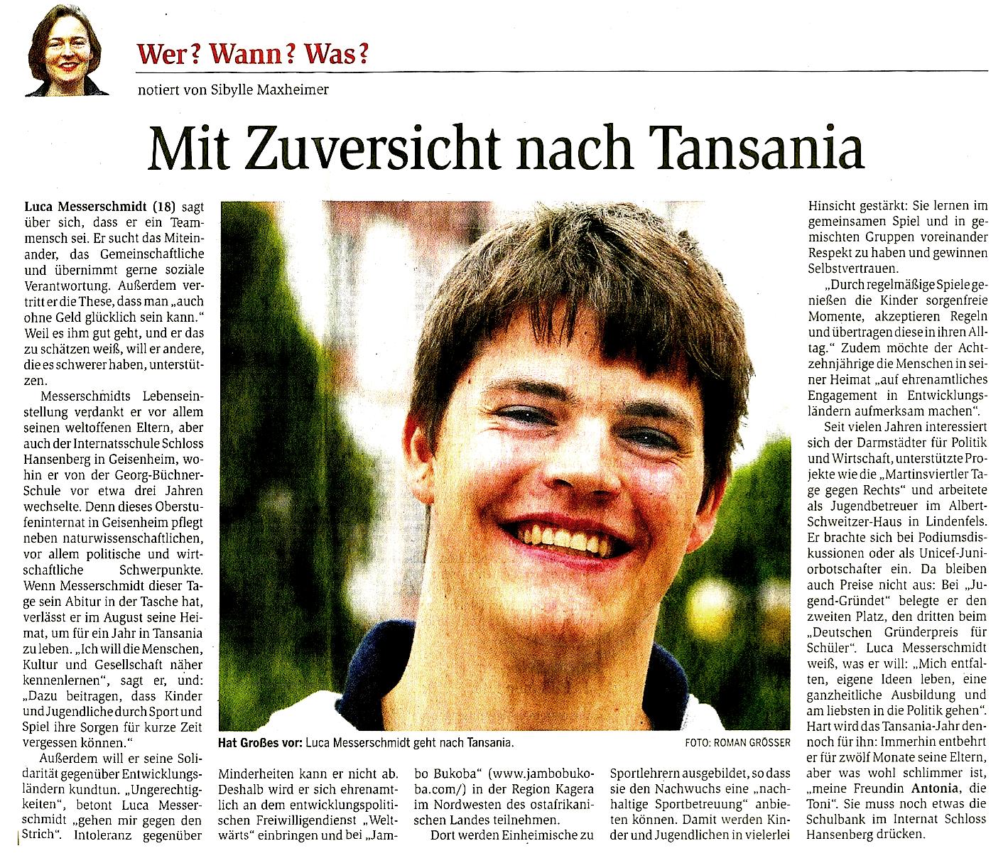 Zeitungartikel Darmstädter Echo am 8.6.2013