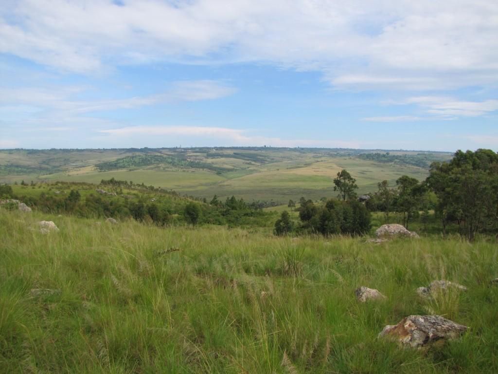 Landschaft Bukoba