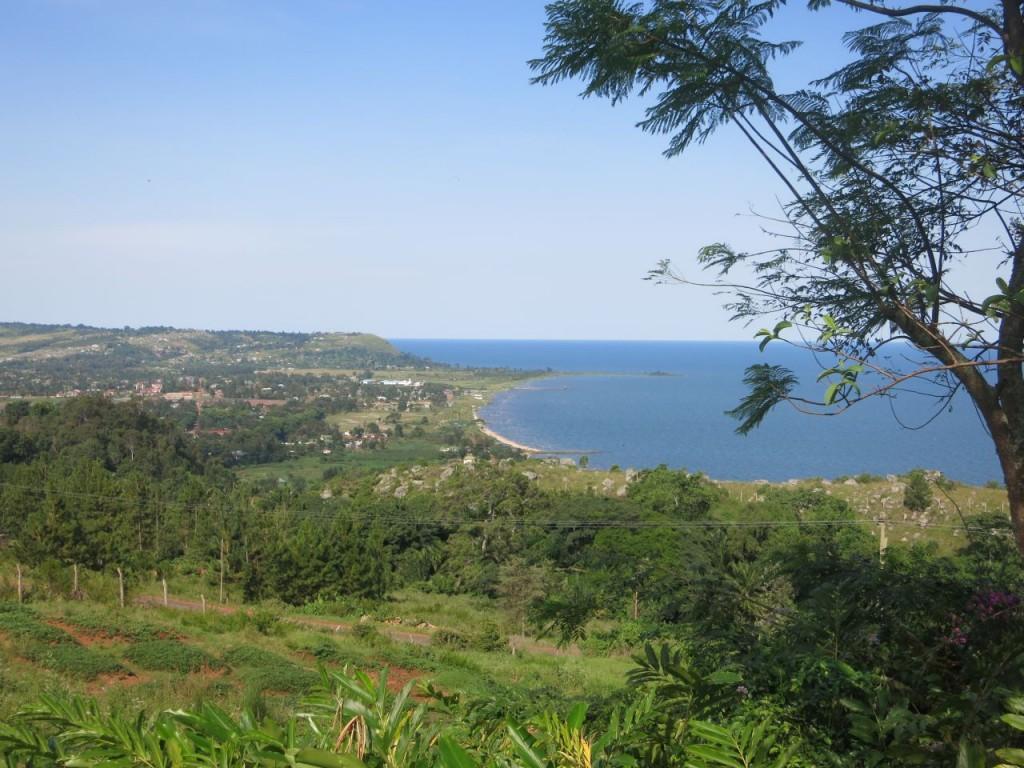 Blick auf Bukoba